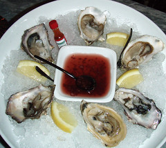 Oysters at Foxtail