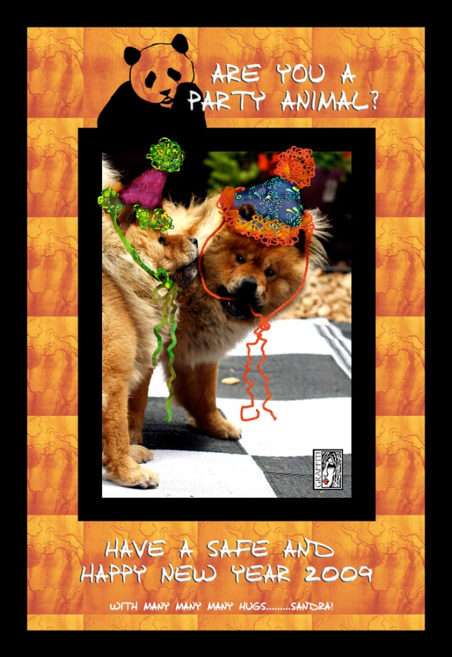HAPPY NEW YEAR TO ALL MY FLICKR FRIENDS!!