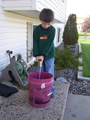 Filling the bucket with water to hold the trees until they get into the ground.