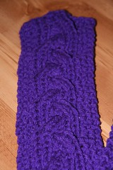 2009-01-26-purple-scarf2