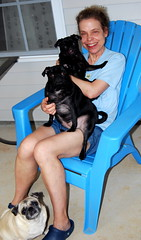Jon's mom and her grandpuggies