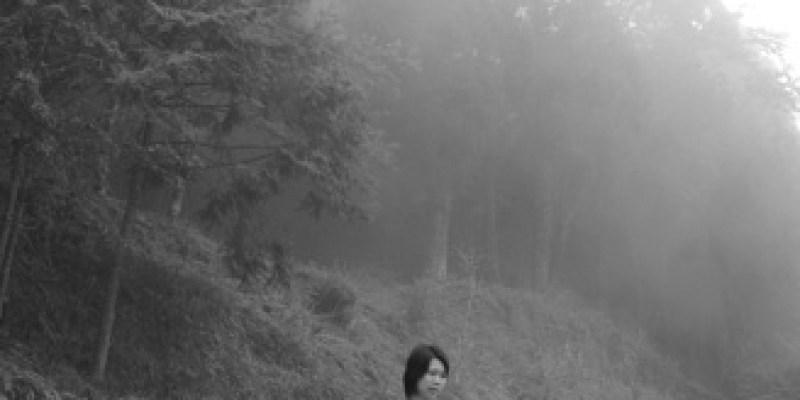 霧中美麗。阿里山(4.1ys)