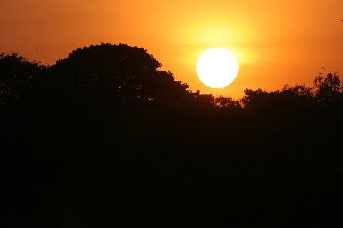 sunset glory lalbagh 20D