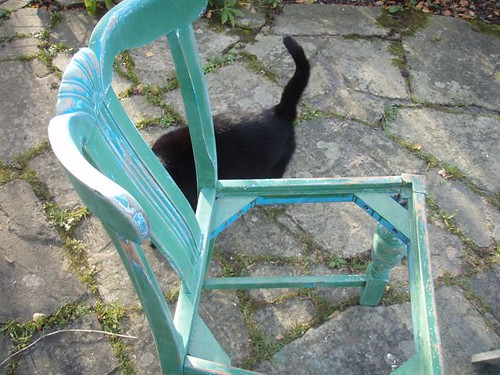 chair with ebony.JPG.jpg