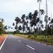 Bintan Roadway 2nd
