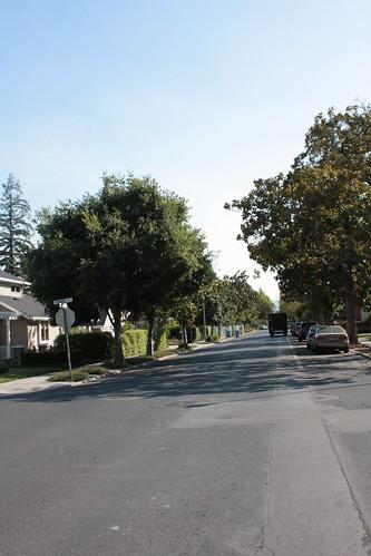 Addison Ave