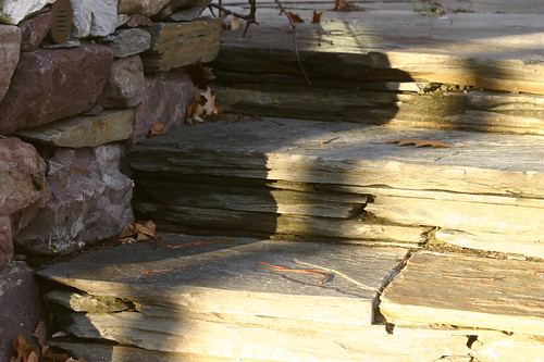 up the side steps, late afternoon