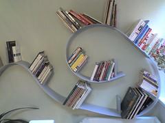 roller-coaster bookshelf