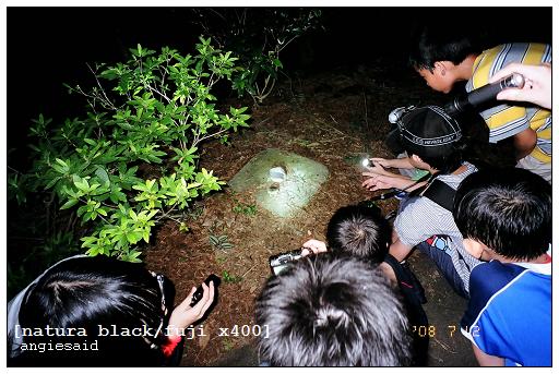 b-20080712_natura_096_iso4_017.jpg