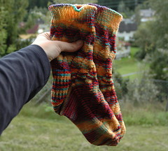 Nannersocks in Baresheep yarns