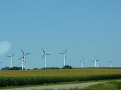 Buffalo Ridge windmills