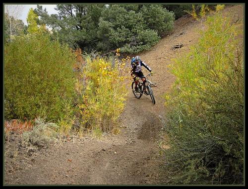 Sullivan Canyon