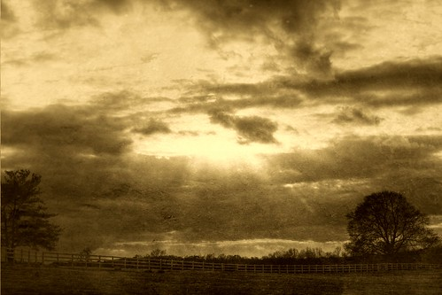The Fence and the Sky—in sepia