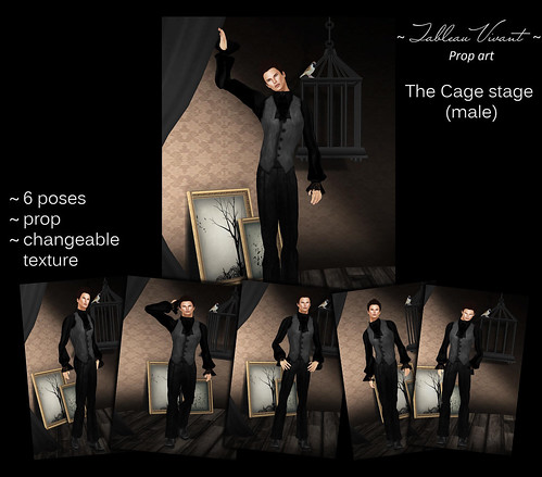 ~Tableau Vivant~ Prop Art ~ The Cage stage (male)