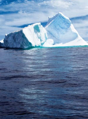 Iceberg in Witless Bay - Photo : SIDwilliams