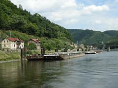 Labe (Elbe) in Decin