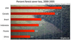Global Forest loss