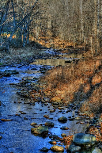 November on a Mountain Stream