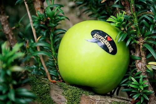 Kopparberg apples @ Charleville Castle