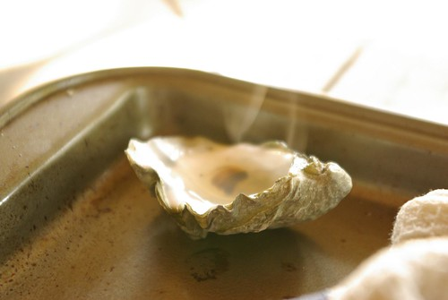 hot oyster shell