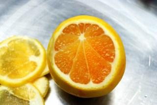 meyer lemon, beveled