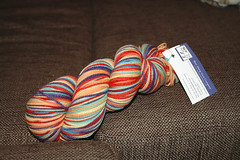 Bare Sheep Yarns, fingering weight in the Rainbow colorway