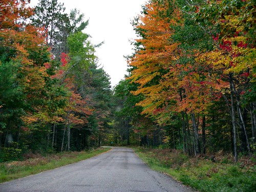 Gorgeous Fall Colors Yesterday on the Road