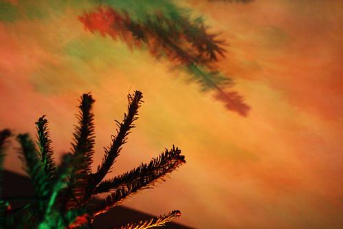 Christmas Tree Light Shadows