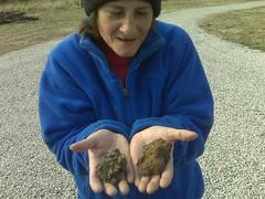 2 Meteorites