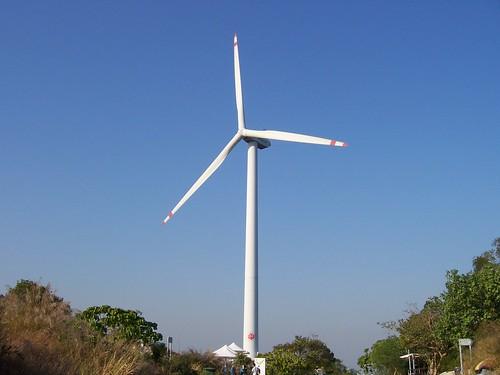 南丫島 2008