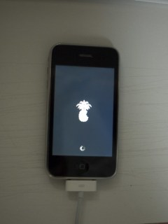 my iPhone 3G got pwned