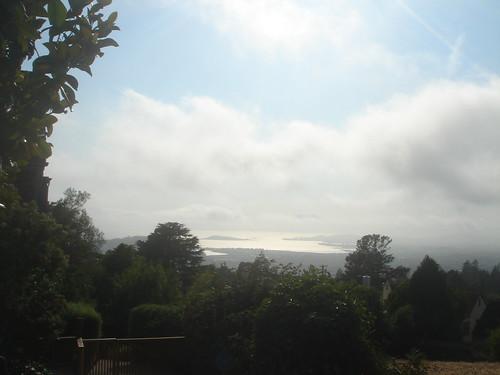 San Francisco_foggy city 2