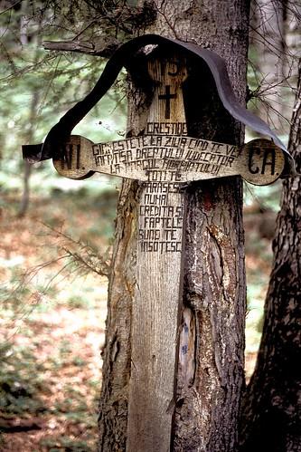 Cruz en el Parque Nacional Piatra Craiului