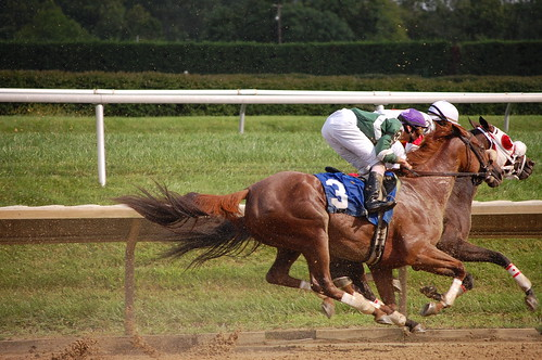 horses curving into the back stretch of a race