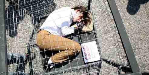 Una activista de la organización AnimaNaturalis permanece enjaulada durante 12 horas, simulando a los animales que se encuentran encerrados en los circos toda su vida.