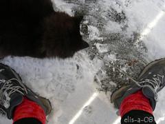 snølek