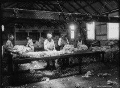 Wool-Sorting Room, Clifton Station