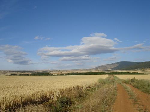 El camino II