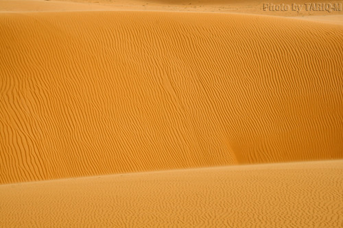 Wall of sand by TARIQ-M