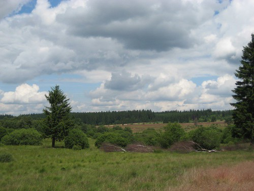 Militair kamp Elsenborn