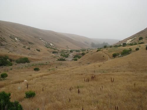 Santa Cruz 13