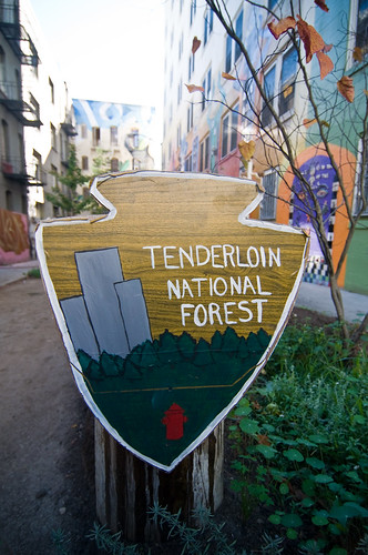 Tenderloin National Forest