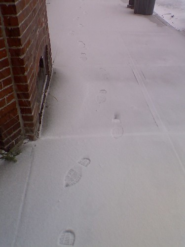 Some snow prints
