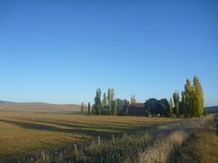 2010MAY011633