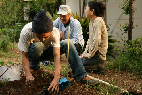 makoto plants tomatoes while suzuki-san and rei chat