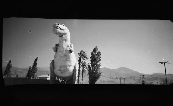 T-rex, Marissa Bergmann