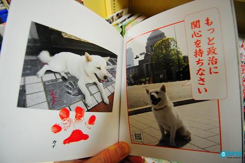 kaikun otoosan dog book