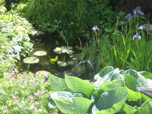 Swiss Lady's garden