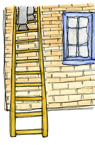 landlord up a ladder