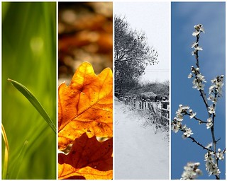 Four Seasons in One Day